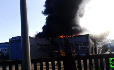 """""""Spaliła się hala i auto"""". Pożar stacji kontroli pojazdów"""