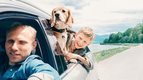 """Samochodem na wakacje w Europie. Ekspert o """"pułapkach"""" czekających na kierowców"""