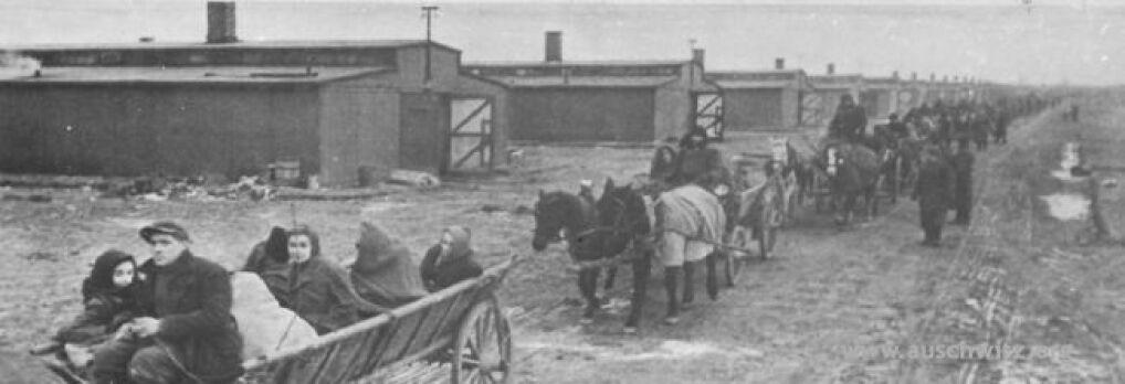 Wywożenie wyzwolonych więźniów z terenu dawnego KL Auschwitz II-Birkenau do okolicznych szpitali.