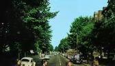 """50. rocznica zdjęcia z okładki """"Abbey Road"""" The Beatles. Fani zebrali się na ulicy"""