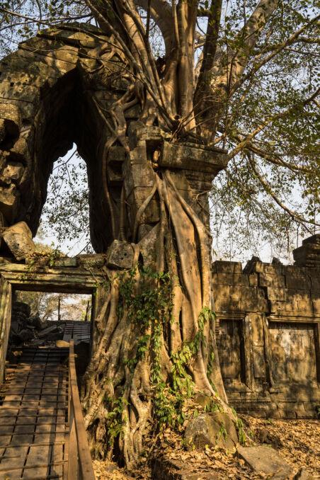 Pokryte roślinnością ruiny Preah Khan w Kompong Svay