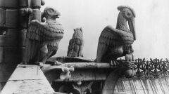 Fragment Katedry Notre-Dame z rzeźbami, 1925 - 1939r.