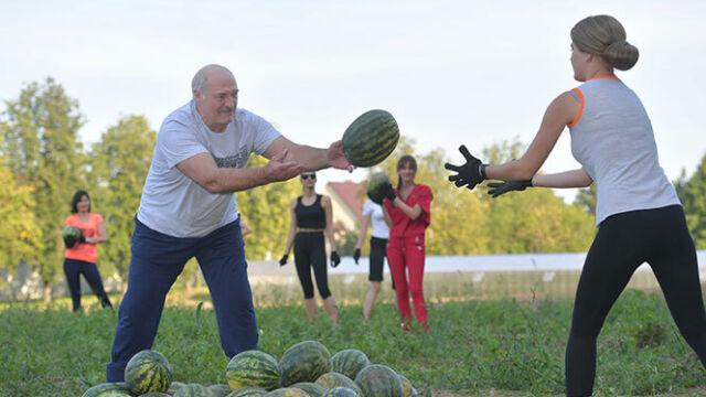 Łukaszenka przekazał sztylet dla Trumpa i pojechał zbierać arbuzy