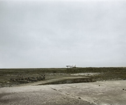 Agnieszka Rayss, Krajobraz z popasem, 2019, fotografia, 100x120 cm, dzięki uprzejmości artystki i Instytutu Fotografii Fort