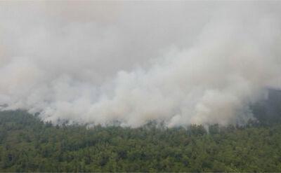 Zasiewanie chmur sposobem na pożary lasów i zanieczyszczenie w miastach