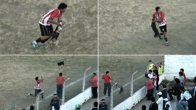 """Rzucił psem, teraz klub """"rzucił"""" jego"""