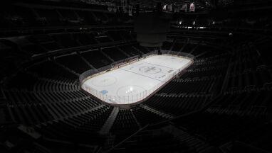Hokeiści z NHL zawiesili rozgrywki.