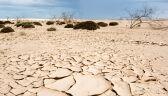 Problem z dostępnością pitnej wody jest coraz poważniejszy