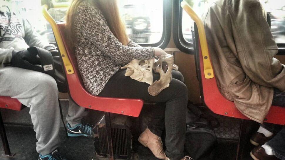 """""""Dama z miednicą"""" w tramwaju. """"To było tak piękne, że nie mogłam tego przepuścić"""""""