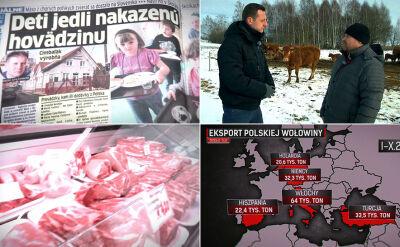 Afera wokół uboju chorych krów a uczciwi hodowcy