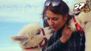 Coaching z koniem, terapia z alpaką. Pomóż Orkiestrze i sobie