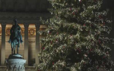 Wielka choinka na Placu Weneckim w Rzymie