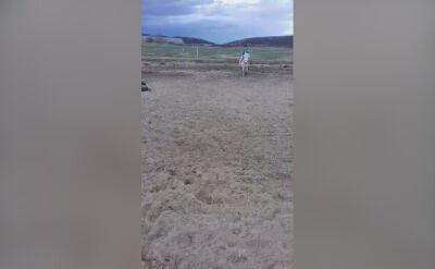 Przejażdżka na kucyku
