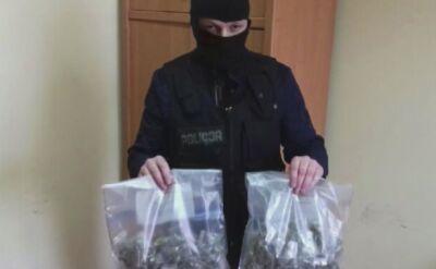 Policja znalazła marihuanę w domach dwóch mężczyzn