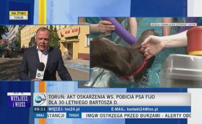 Biegli nie mają wątpliwości, że pies został pobity