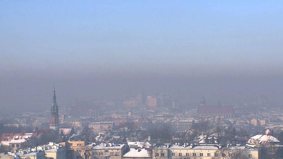 Krakowscy uczeni odkryli, że smog może wywoływać alergię