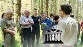 05.06.2016 | Międzynarodowi eksperci w Puszczy Białowieskiej. Sprawdzą, czy skala wycinki jest uzasadniona