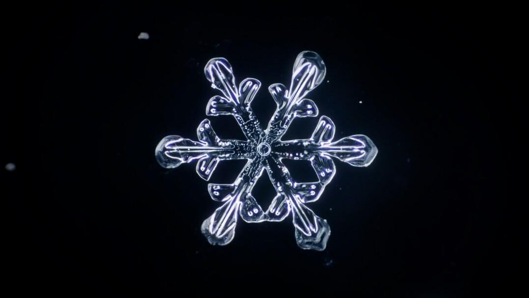 Tak powstają płatki śniegu. Hipnotyzujące nagranie w dużym zbliżeniu