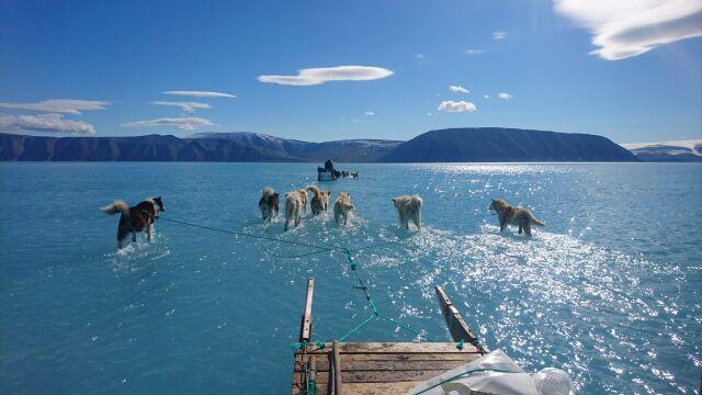Gwałtowne topnienie na Grenlandii. Niedawno był tu lód, teraz jest woda