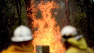 Wschodnia Australia płonie.