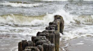 Silny wiatr. IMGW alarmuje północ Polski
