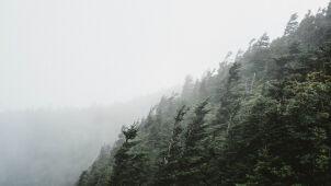 Gęsta mgła i silny wiatr. Alarmy IMGW