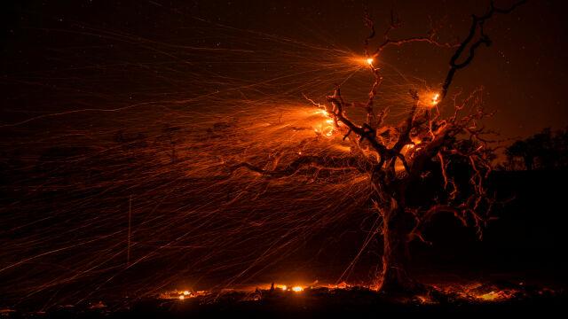 W Kalifornii wybuchają kolejne pożary.