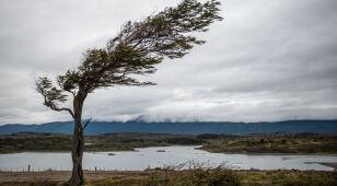 Pogoda na dziś: porywisty wiatr w górach, do 17 stopni