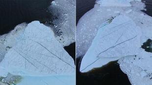 """Lodowiec się """"ocielił"""" na Atlantyku. Fantastyczny filmik z drona"""