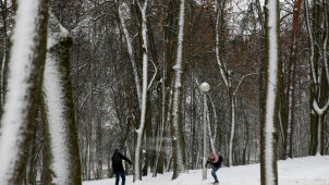 Weather forecast for tomorrow: snow falls in most of the country