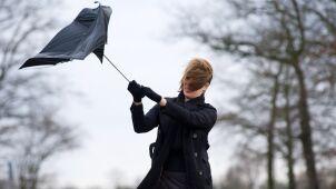 IMGW ostrzega przed silnym wiatrem. Żółte i pomarańczowe alarmy