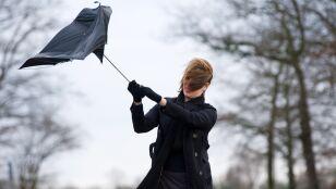 IMGW ostrzega przed silnym wiatrem. Żółte alarmy
