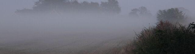 Gęsta mgła nad Polską. Alerty IMGW w trzech województwach